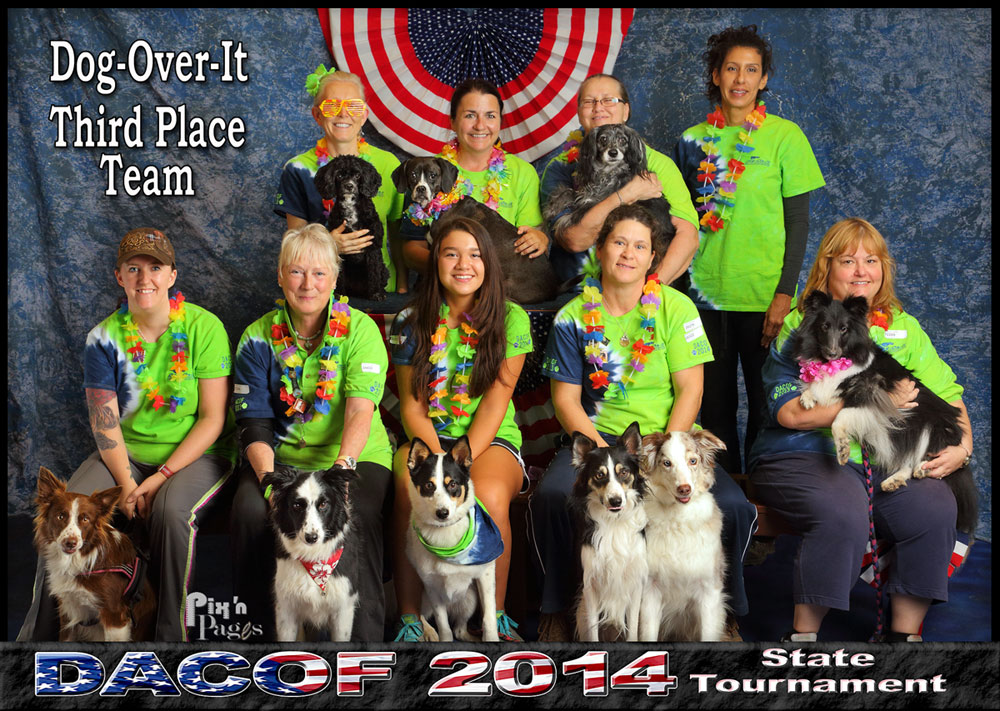 Dog-Over-It 2014 Thrid Place DACOF Team